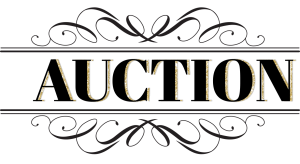 auction-logo-center